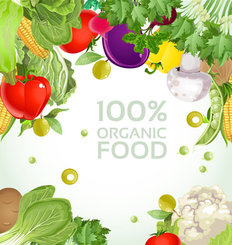 Vegetable background 03