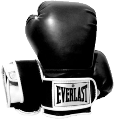 Everlast Boxing Gloves PSD