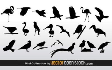 Free Vector Bird Silhouettes Collection