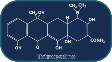 Tetracycline Structure