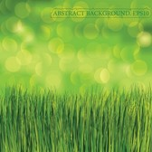 Green Grass Bubbles Abstract