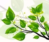 Nature Green Leaves