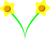 Simple five Pettle Daffodil