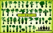 46 Vector Home Plants Clipart