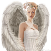 Angel PSD