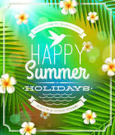 Beautiful summer vector background001