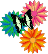 Butterfly And Flowers