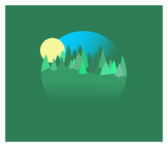 A Daytime Forest Scene with Trees that is Round