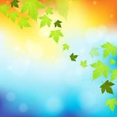 FALLING LEAVES VECTOR ILLUSTRATION.eps