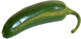 Jalapeno Pepper PSD