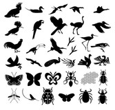 Hundreds Of The Elements Of Nature In Pictures