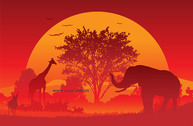 Sunset Vector Graphic Under The African Continent