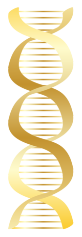 Gold DNA icon