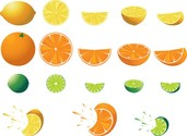 Free Citrus Fruit
