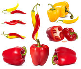 Exquisite Chili Pepper