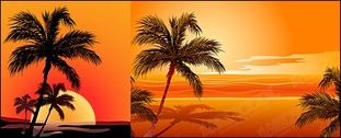Coconut Vector affect the seaside sunset material