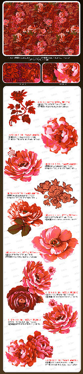 Pink Flowers Psd Material