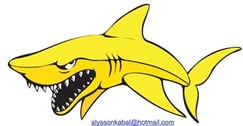 Requin Vector 5