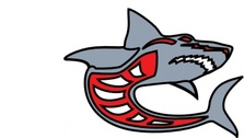 Ashed Shark Grey Red By Ashed