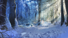 Winter Background PSD