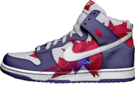 exclusive nike dunks PSD