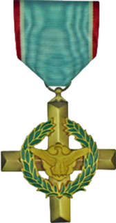 Air Force Cross Medal PSD