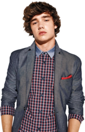 Liam Payne of One Direction PSD