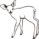 fawn outline