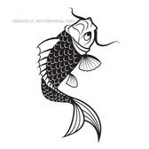 VECTOR IMAGE OF KOI FISH.eps