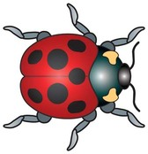 Red Bugs 2