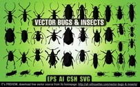 38 Vector bugs & insects