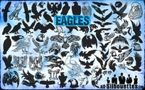 Vecteur 72 Eagles Clipart
