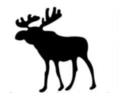 Abercrombie & Fitch moose PSD