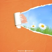 Free spring design template