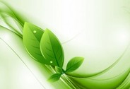 Eco Leaves and Green Wave