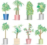 66 Potted Plants