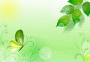 Springlike Green Nature Butterfly Abstract Background