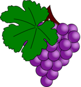 Grape with Vine leaf