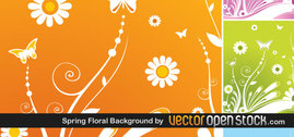 Different spring flowers background