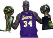 Shaquille O'Neal (Lakers) PSD