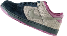 Low Top Nike Dunks PSD