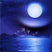 Night sea landscape background