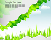 Stock template greenery and nature