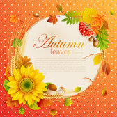 Beautiful Autumn Leaves Frame Background 05- Vector Material Orange Yellow Green