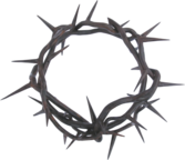 Crown of Thorns PSD