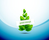 Abstract green leaf picture vector-1