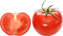 tomate PSD