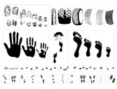 Vector Graphic Traces Of A Variety Of Tire Footprint