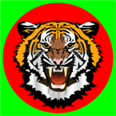 Tiger red on green
