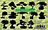 14 Vektor Bonsai Baum